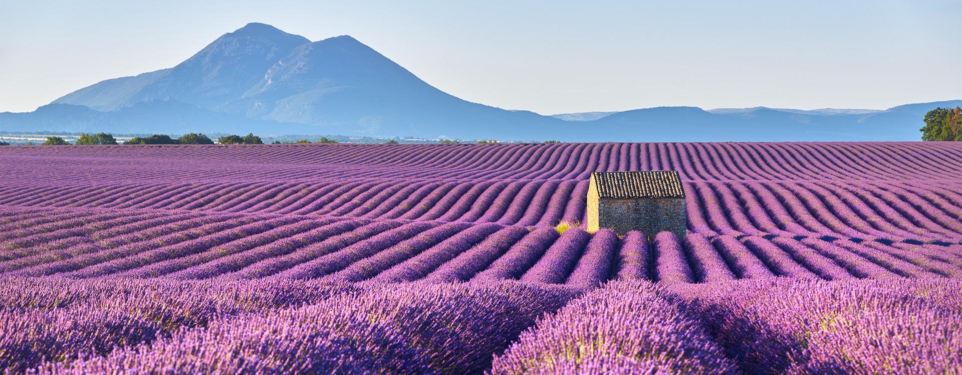 La Provence a la côte ! / C1-C2